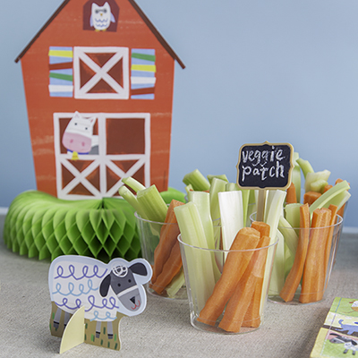 Farm Party Supplies - Farm Party Ideas